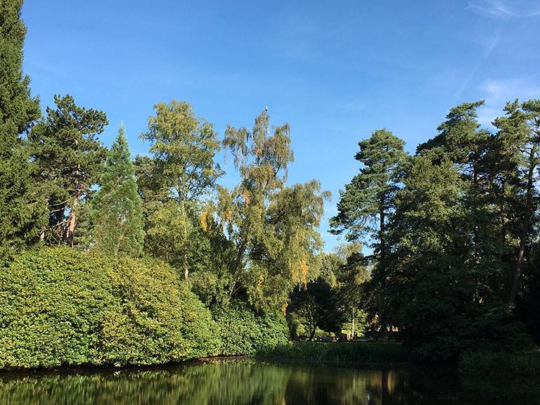 Nordteich Ohlsdorf der Park